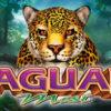 Jaguar Mist Aristocrat