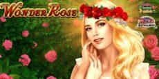 Wonder Rose